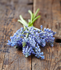 Grape Hyacinths on old wooden background