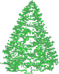 Christmas fir green