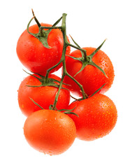 Tomato Isolated white background