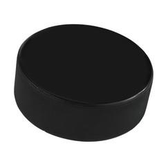 Isolated Hockey Puck
