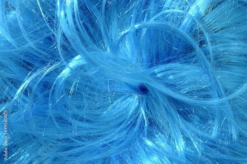 Close up of blue hairs