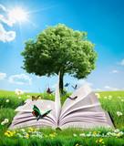 Fototapety green magic book