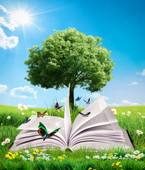 green magic book