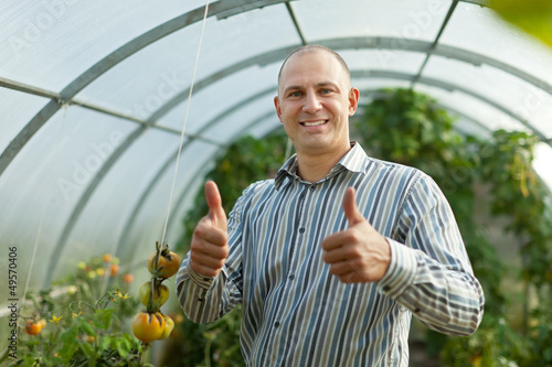 Smiling man in tomatos plant