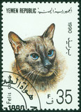 stamp printed in Yemen shows a cat