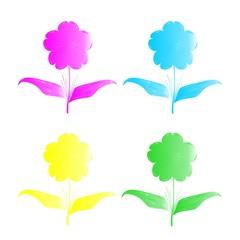 Four florets of different color, illustration