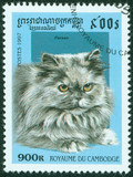 stamp printed in Cambodia shows Persian cat
