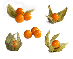 set of ripe physalis