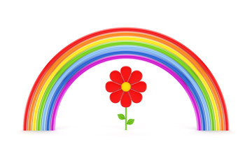 Rainbow and red flower.