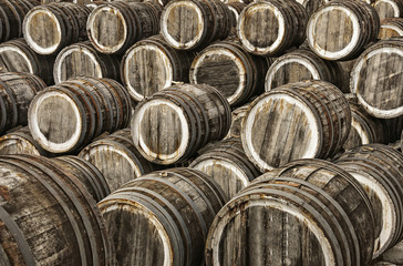 oak wine casks