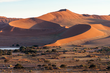 Dunes at sunrise in the Namib desert in Namibia