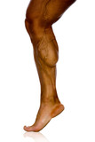 musculature of male athlete's leg
