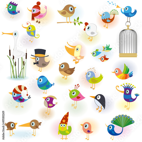 Big Cartoon Bird Set