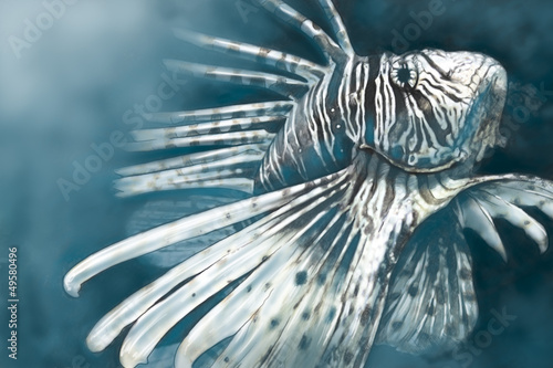 Illustration made with a digital tablet scorpion fish dangerous,
