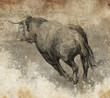 Sketch made with digital tablet, bull running