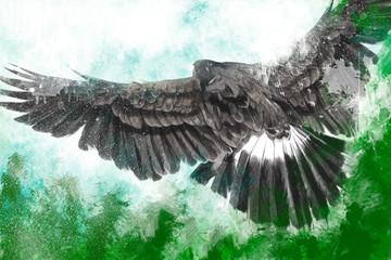 low-flying eagle illustration over artistic background