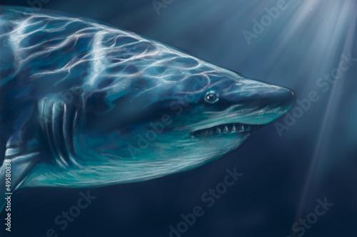 A white shark swimming along underwater illustration, digital ta