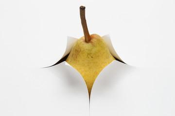 Birne steckt in Papier