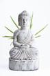 Aloe Vera Buddha
