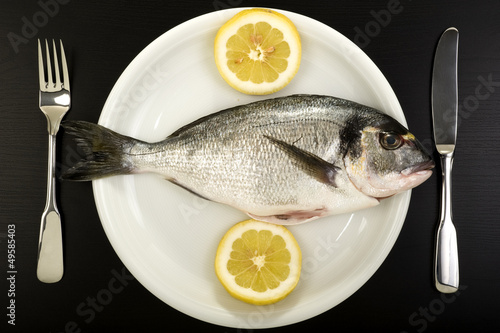 Fresh sea bream on a plate