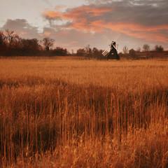Fenland in Cambridgeshire, England