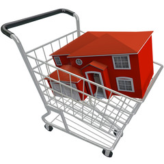 Buying a House - Shopping Cart