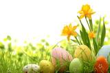Fototapety Easter Decoration