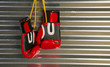Red Boxing Gloves Hanging on a Hook