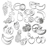 different fruits set . vector illustration