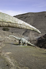 Rare dinosaur
