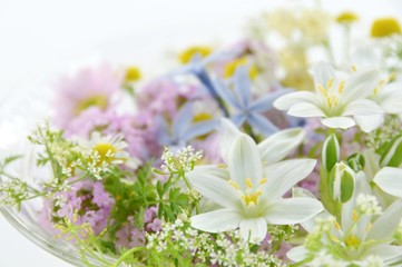 herbal flowers