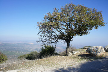 View from Mount Tabor, Israel