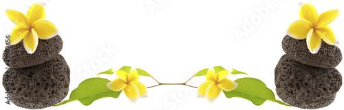 composition galets, fleurs et feuilles