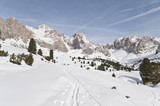 Alpine Skiing trails in the Snow