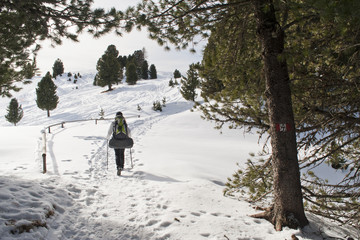 Girls is hiking through pines, in Winter