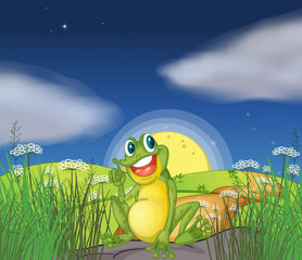 A frog at the top of the hill