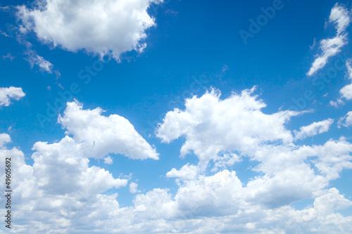 blue sky - 49605692