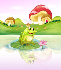 A frog above a waterlily