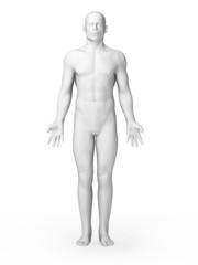 3d rendered illustration - white male