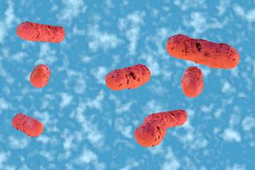 Salmonellen - 3D Render