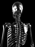 Fototapeta ilustracja - zdrowie - Obrazy 3D