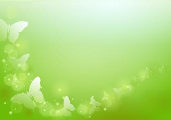 Frühlingsmotiv - Schmetterlinge, Bokeh