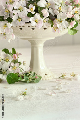 Apple blossom flowers in vase