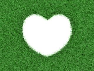 Heart shape in green grass