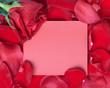 Red rose greeting card.