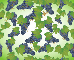 seamless background a bunch of grapes