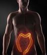 Focused on male colon