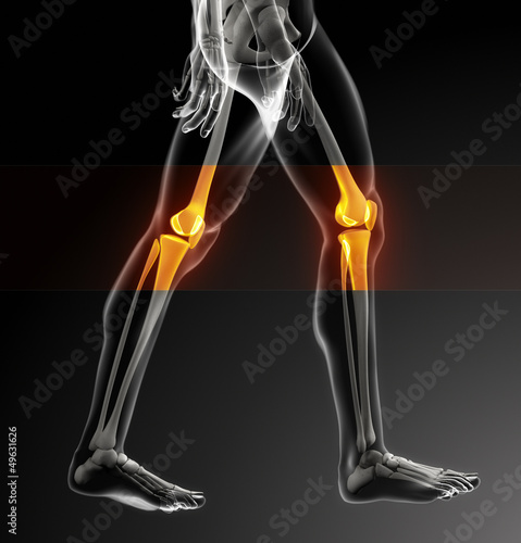 Human knee scan