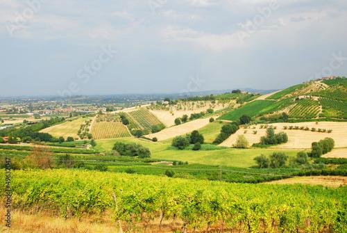 Papiers peints Colline Italy, vineyards near Santarcangelo, Romagna
