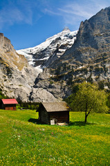 Small Chalet with mountain backdrop, Grindelwald